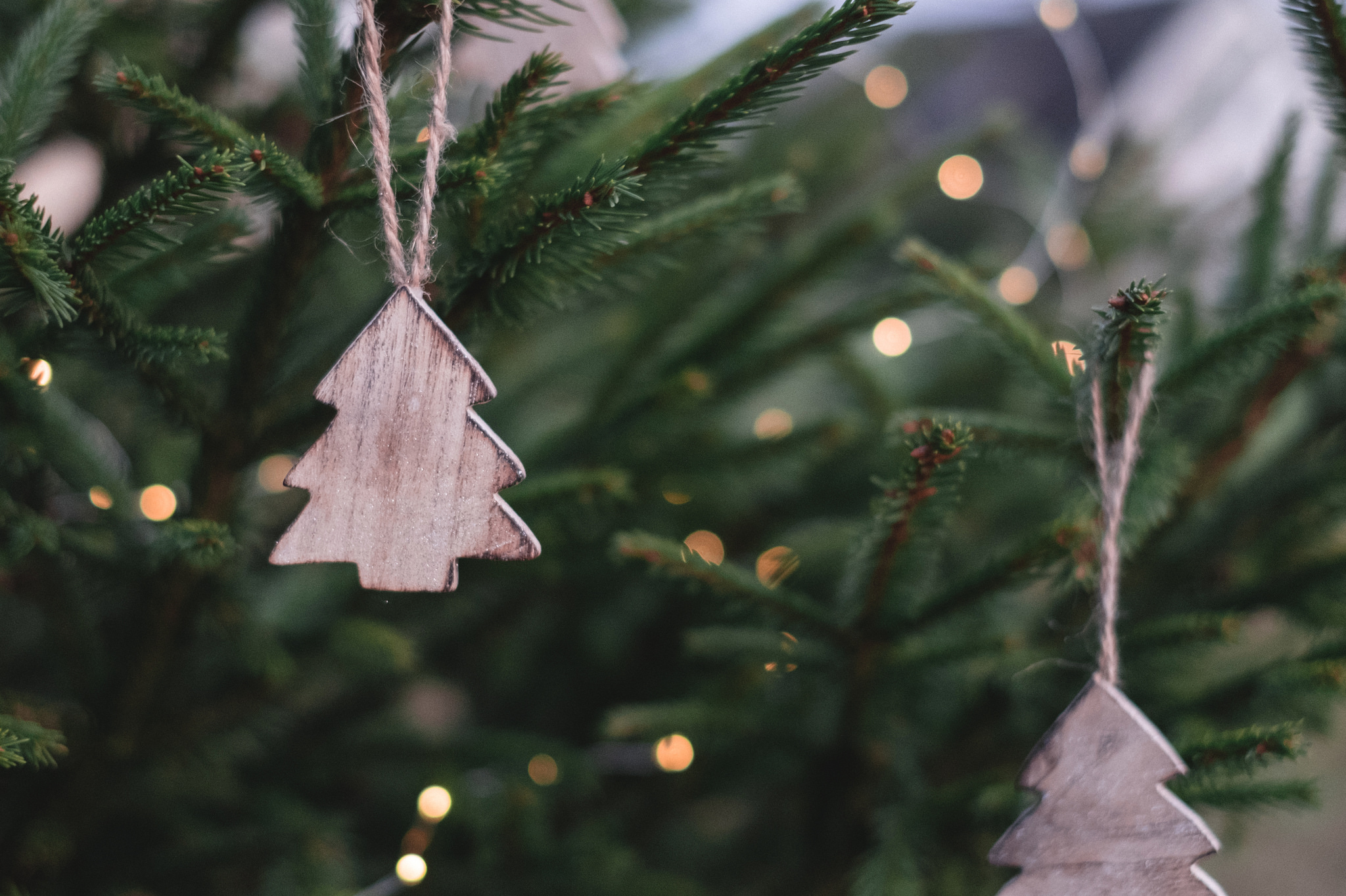 83c8e3ad611 How to Make the Holidays More Sustainable