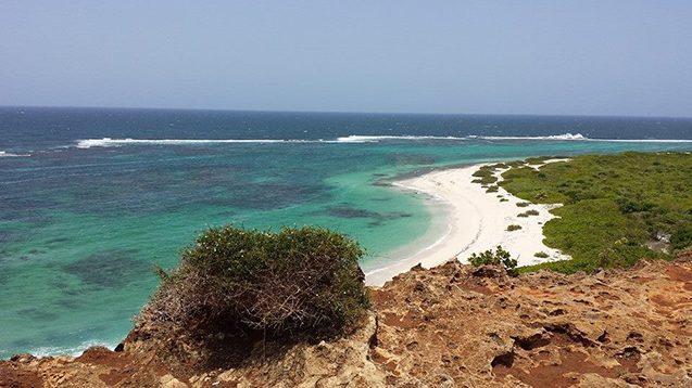 climate migration beach barbuda