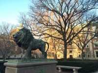 Roary the lion at Columbia University