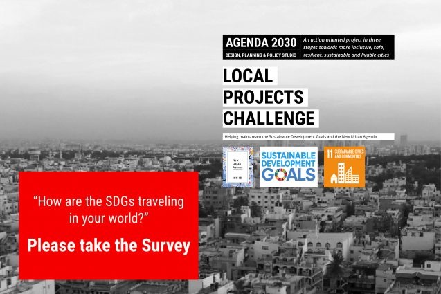 sustainable development survey