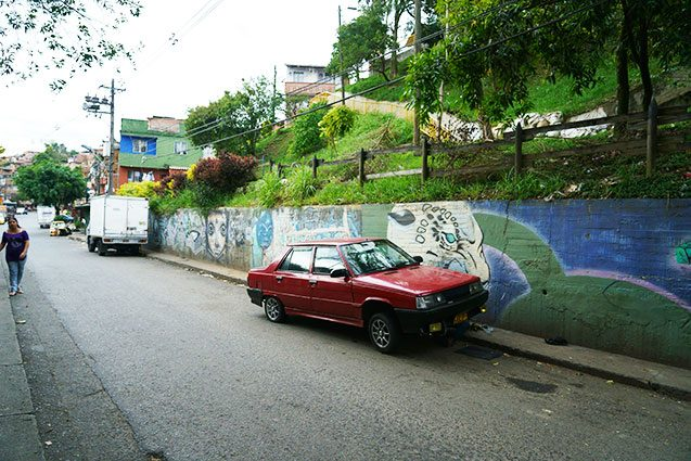 green space in comuna 8