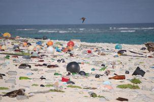 Plastic littered beach