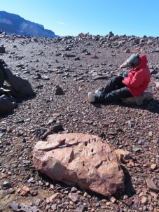 scientist taking notes next to boulder