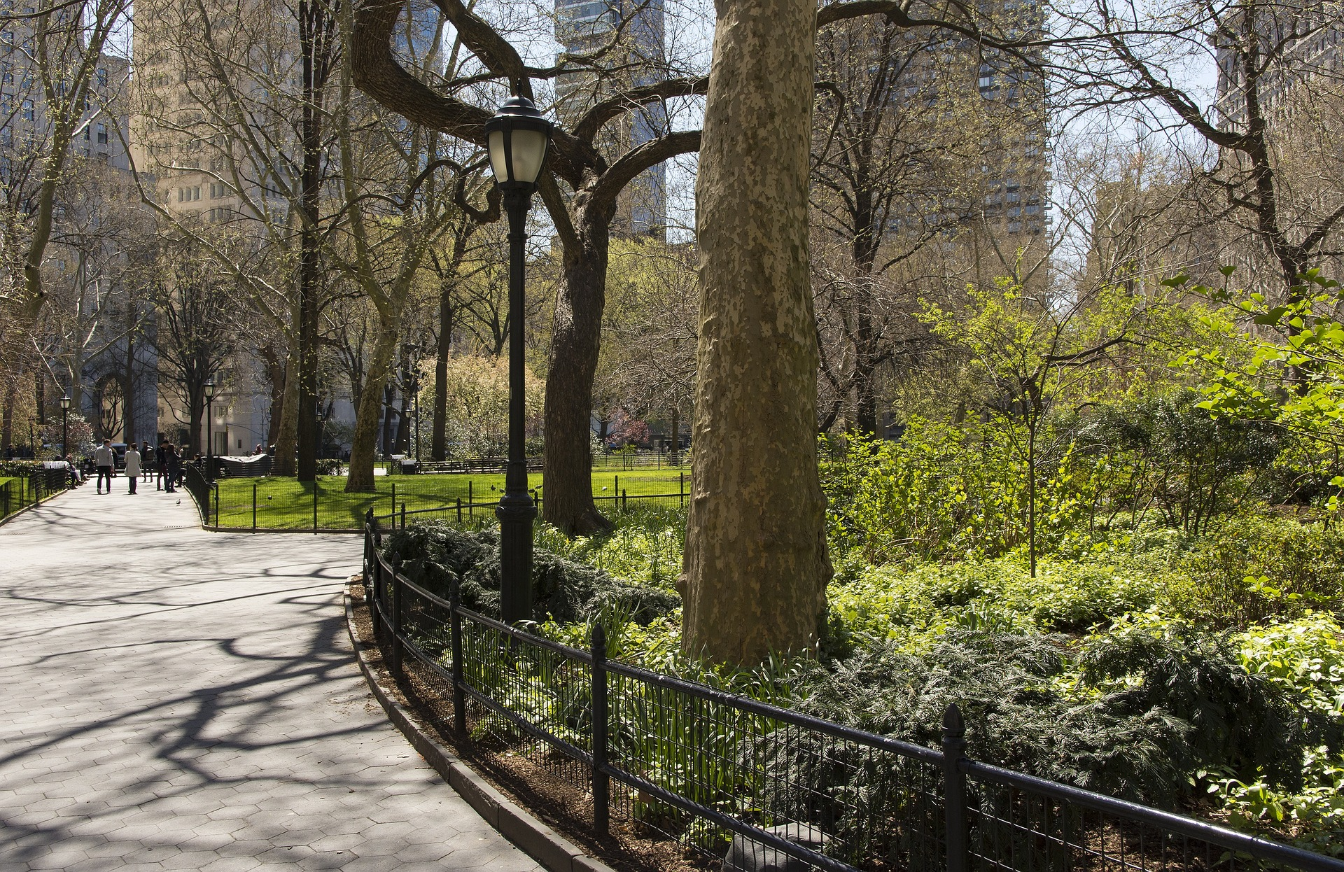New Yorkers Need to Invest in Their Parks