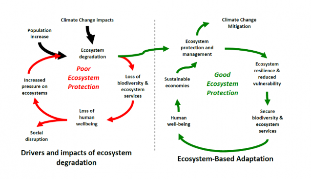 diagram shows benefits of nature-based solutions