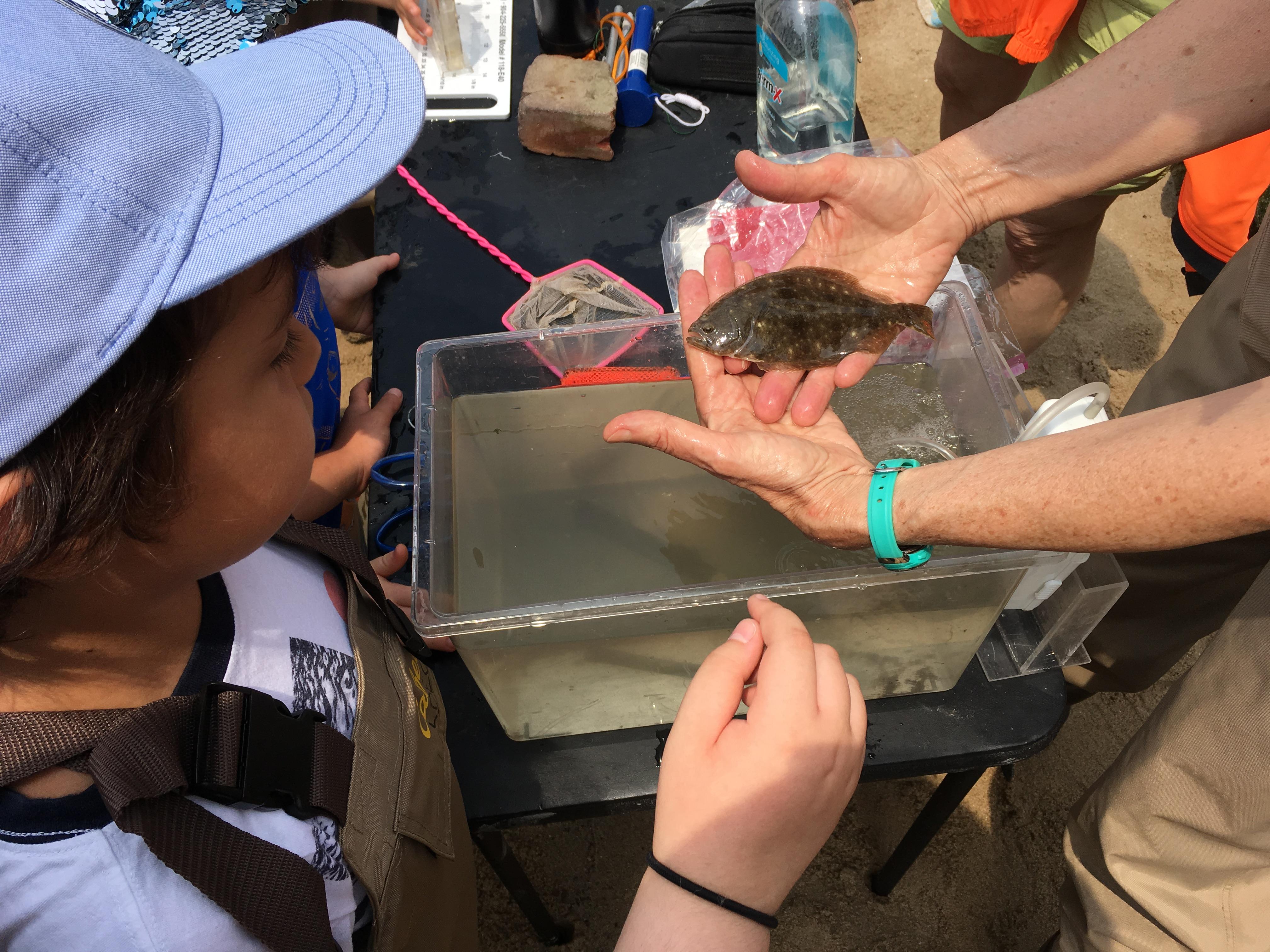 flounder and girl