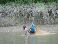 Delays in Dhaka