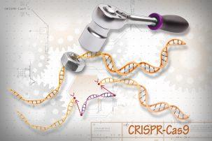 A rendering of CRISPR-Cas9