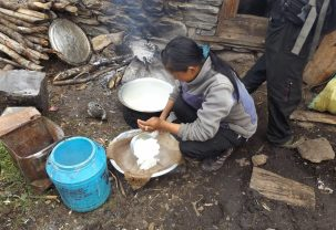 Pema Lham, preparing curds for cheese-making.