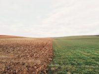 farmland half dry, half green