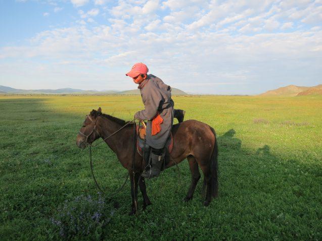 livestock herder in Mongolia