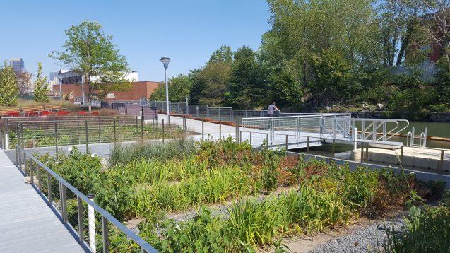 green infrastructure in gowanus
