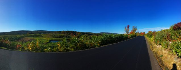 road and fall foliage