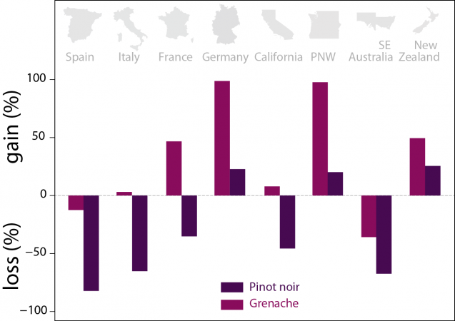 wine gains and losses by country