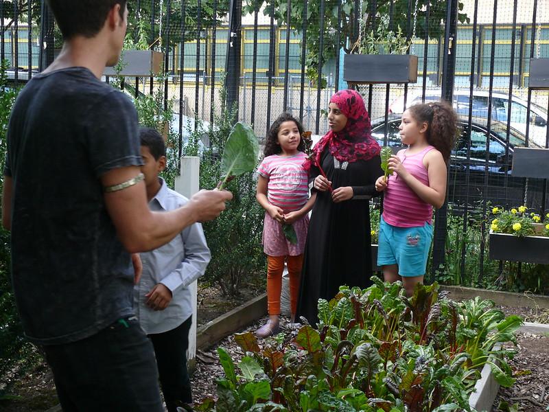 Community surrounding a garden plot.