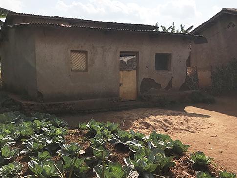 A home and garden in Rwanda