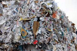 cubes of shredded paper