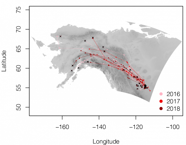 map of spring migration routes over three years