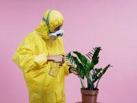 man in hazmat suit watering plants