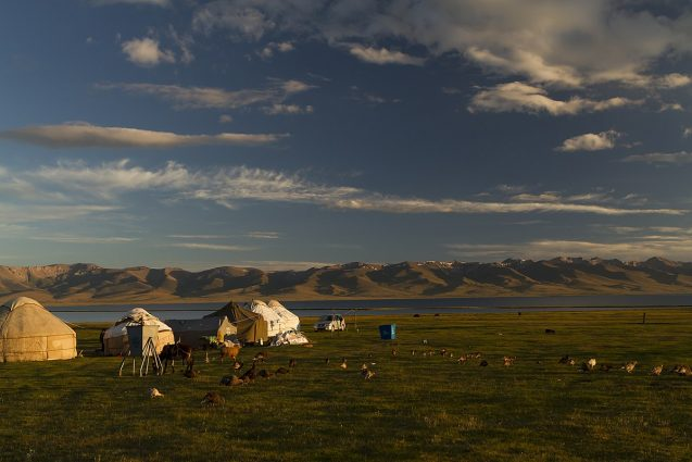 Yurt tents, cattle, and fowl on dark grasses in front of a lake and a backdrop of rugged brown mountains. The sky is big with light clouds.