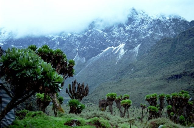 "The ""Snow-capped"" Rwenzori Mountains in Uganda"
