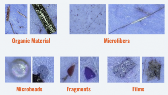 photos of different kinds of microplastics