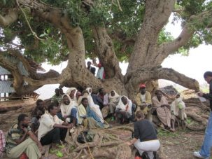 group of people talking under a tree