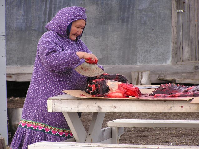 woman cutting seal meat