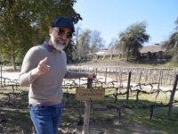 angel munoz in a vineyard