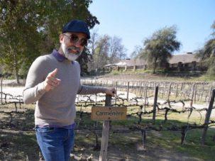 angel munoz in a vineyard