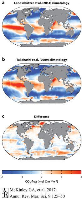 maps of ocean carbon flux