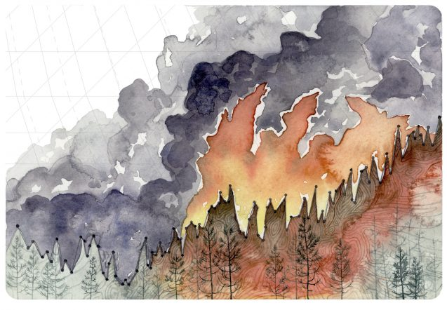 wildfire data and art