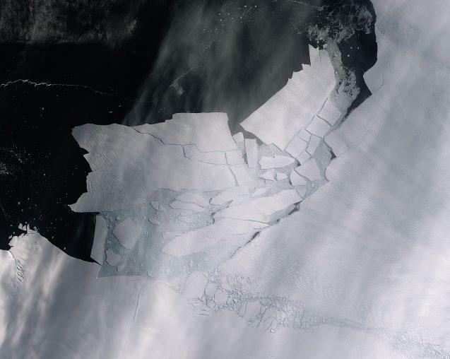 icebergs calving from ice shelf