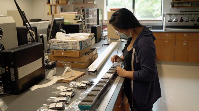 researcher with a mask works on sediment core