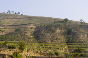 farmland on terraces as part of ecorestoration project in china