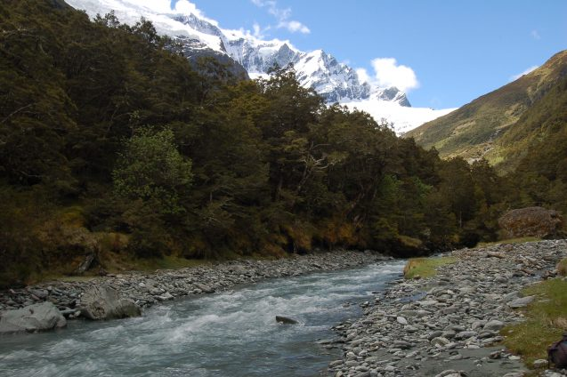 A cool blue river rushes through a heavily forested foreground with bright white mountains towering in the background.