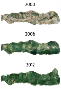 Satellite imagery showing an area getting greener over time due to ecorestoration