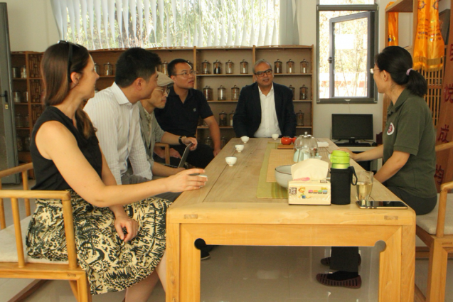 researchers meet around table with tea