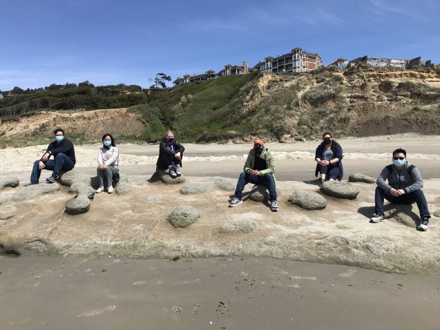 researchers sitting on toadstools on the beach